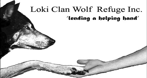 Liki Can Wolf Refuge Inc. Lending a helping hand